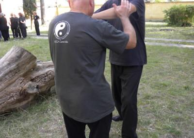 Stage Campi Bisenzio 2015-16